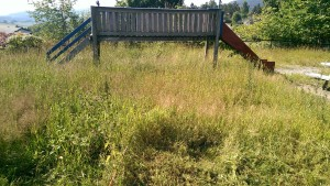 2014-07-10 Lekeplass-gress